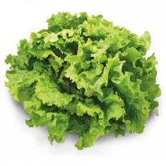 Essoreuse à salade inox