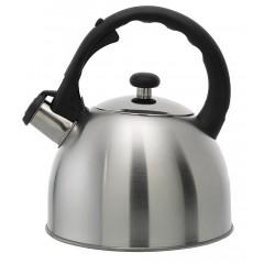 Bouilloire inox induction 2,5 litres