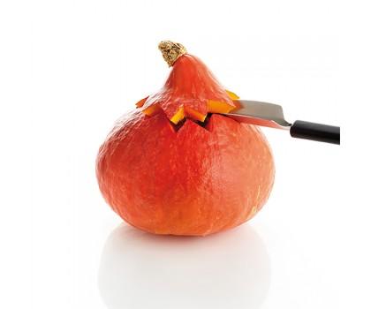 Déco fruit inox