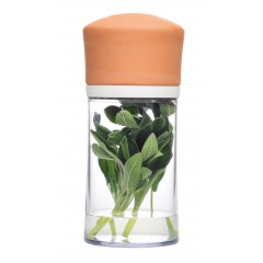Conservateur à herbes couvercle terre