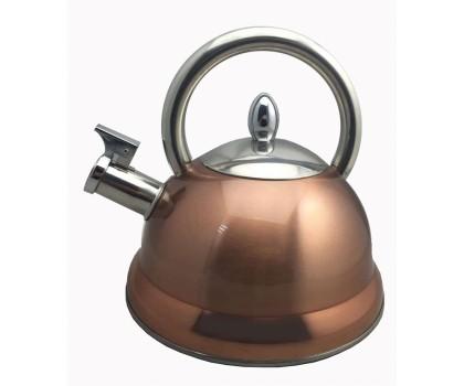 Bouilloire à sifflet inox induction 2,7 l