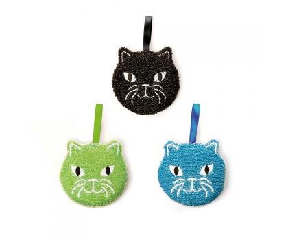 3 éponges chaton
